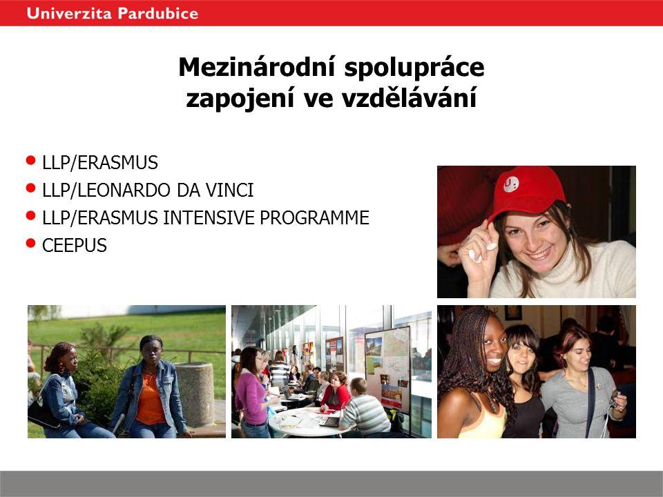 Mezinárodní spolupráce zapojení ve vzdělávání