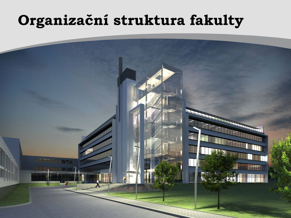 Organizační struktura fakulty