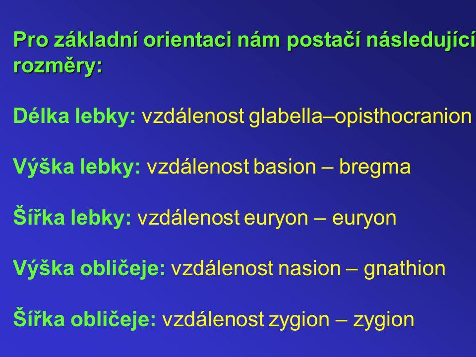 Pro základní orientaci nám postačí následující rozměry: Délka lebky: vzdálenost glabella–opisthocranion Výška lebky: vzdálenost basion – bregma Šířka lebky: vzdálenost euryon – euryon Výška obličeje: vzdálenost nasion – gnathion Šířka obličeje: vzdálenost zygion – zygion