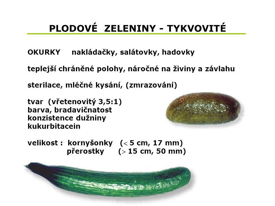 PLODOVÉ ZELENINY - TYKVOVITÉ