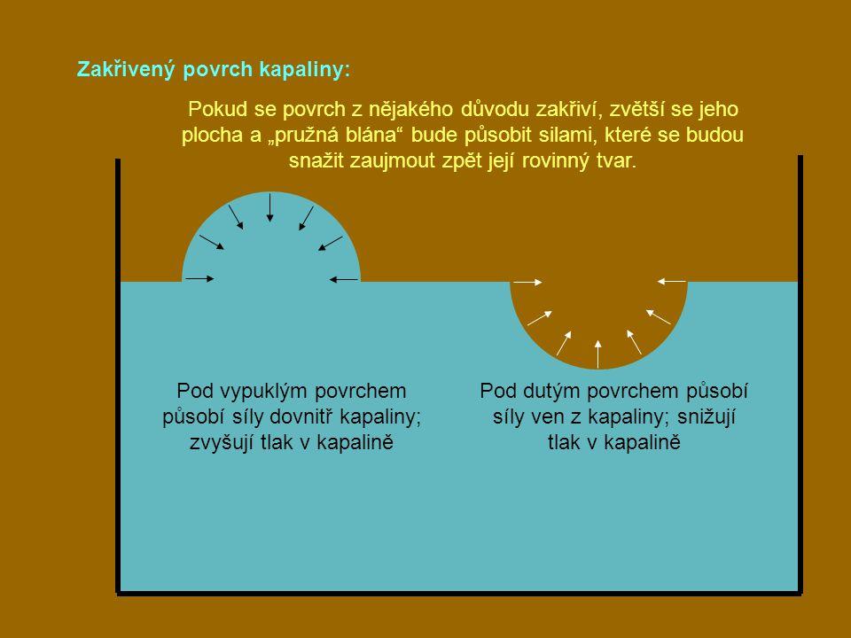 Pod dutým povrchem působí síly ven z kapaliny; snižují tlak v kapalině
