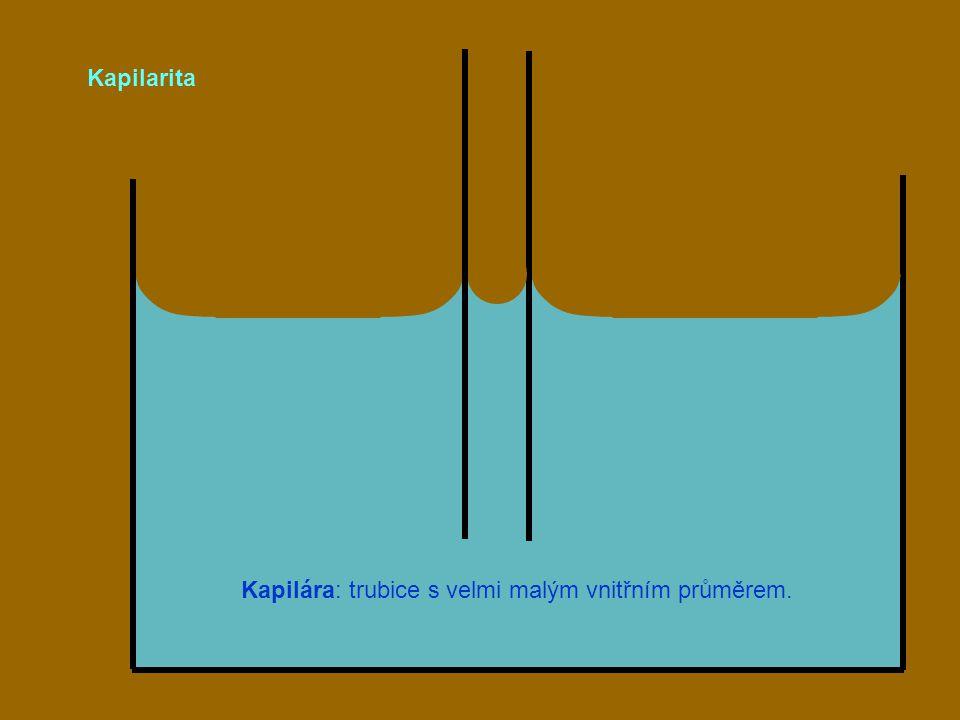 Kapilára: trubice s velmi malým vnitřním průměrem.
