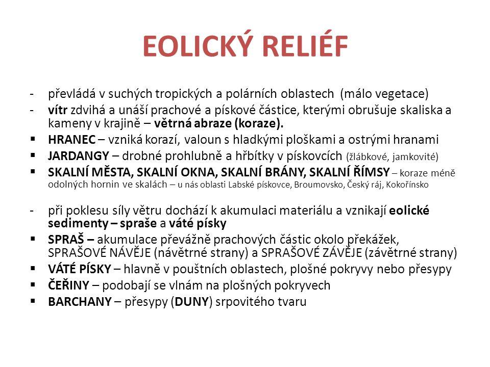 EOLICKÝ RELIÉF převládá v suchých tropických a polárních oblastech (málo vegetace)