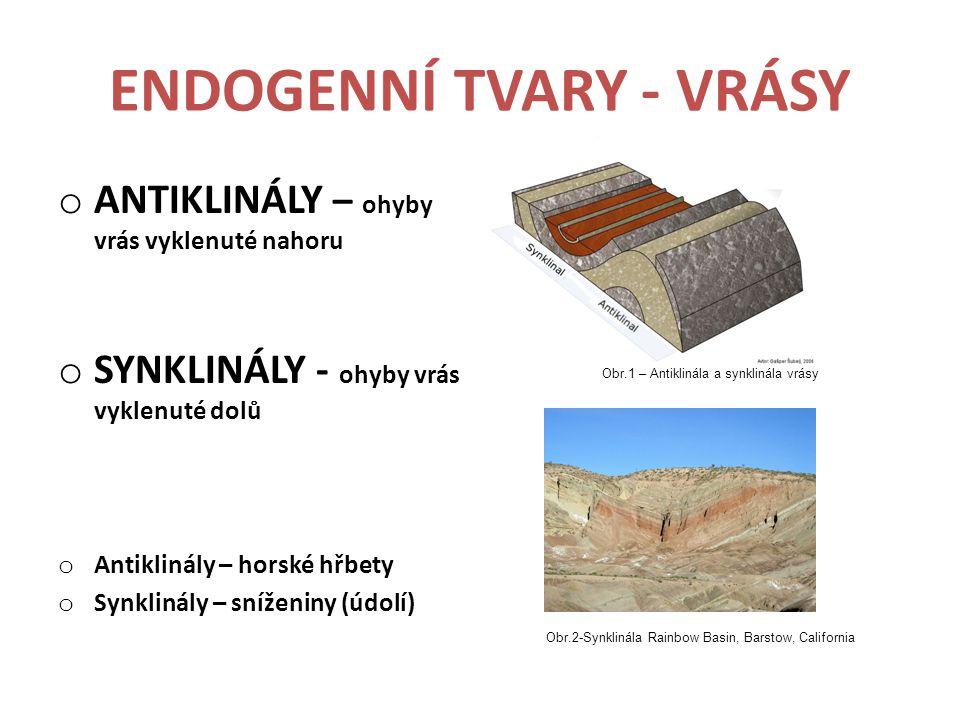 ENDOGENNÍ TVARY - VRÁSY