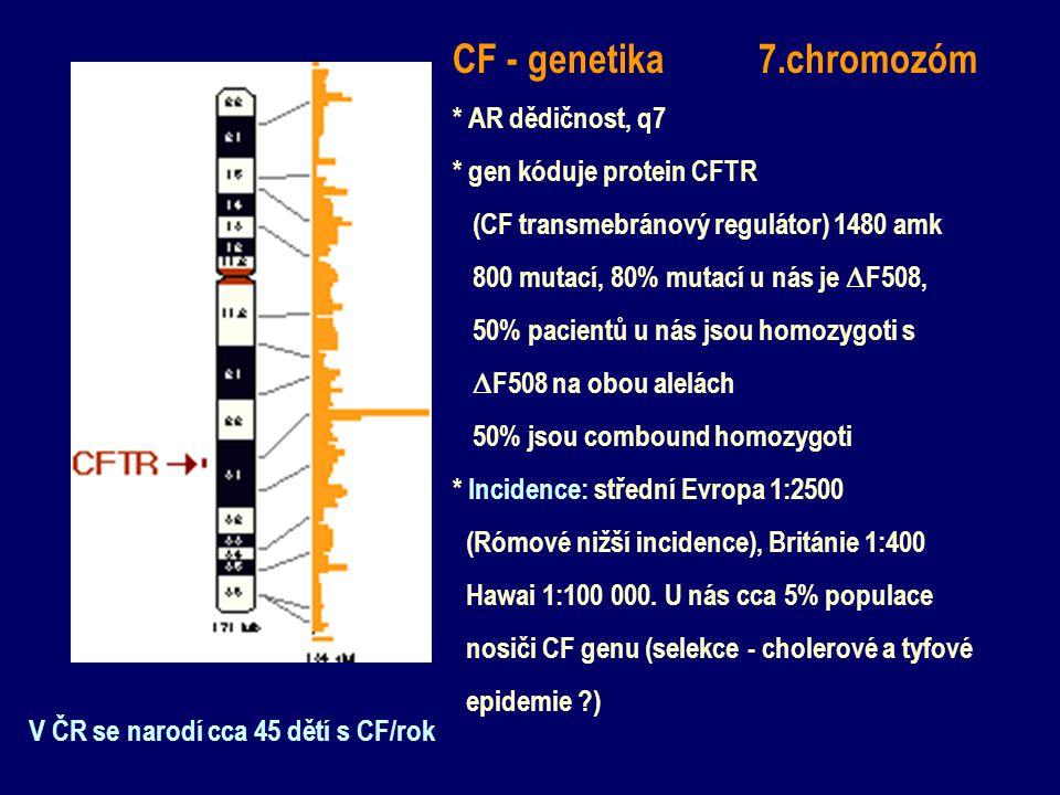 CF - genetika 7.chromozóm