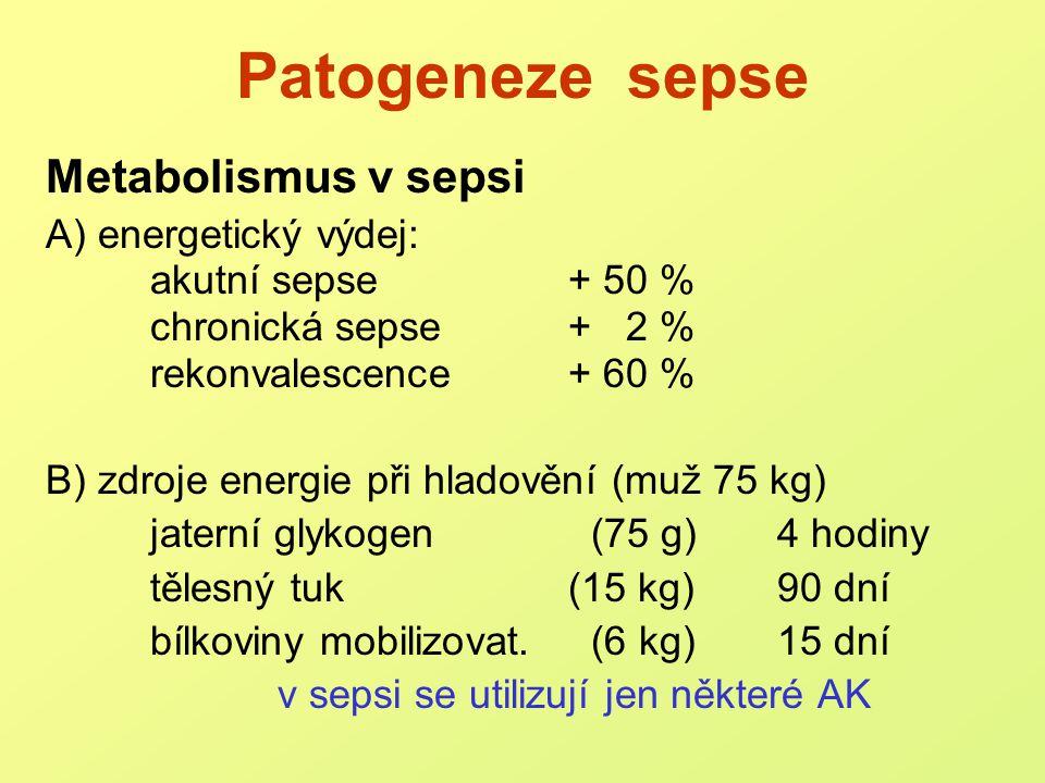 Patogeneze sepse Metabolismus v sepsi A) energetický výdej: