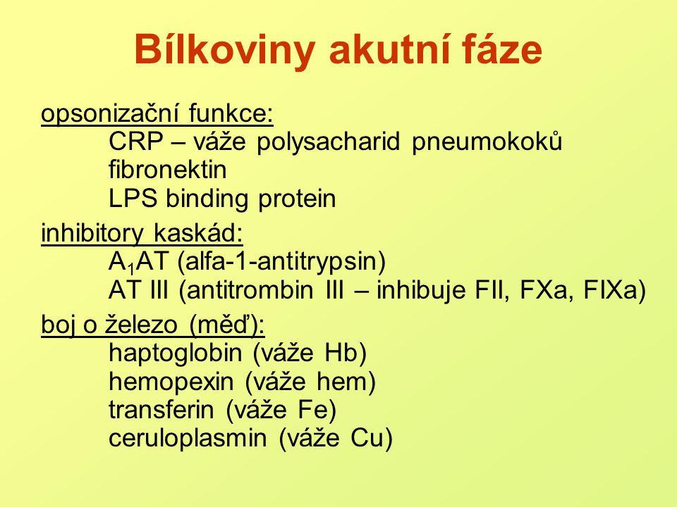 Bílkoviny akutní fáze opsonizační funkce: