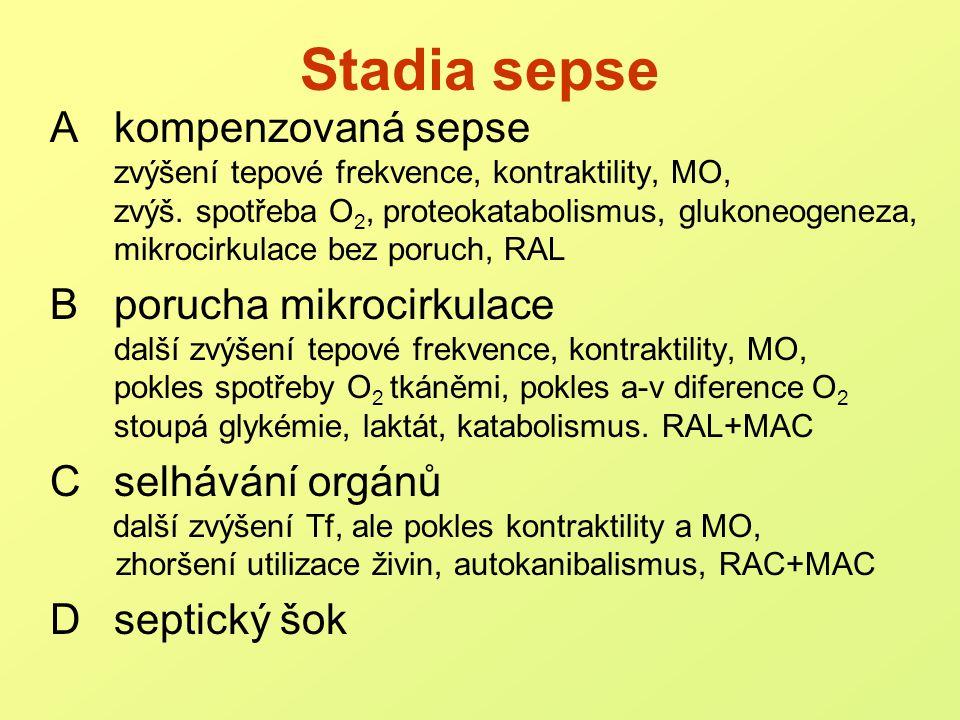 Stadia sepse A kompenzovaná sepse B porucha mikrocirkulace