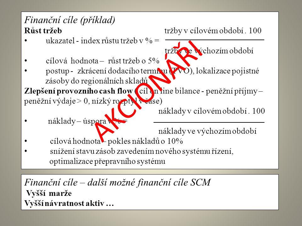 AKCIONÁŘI Finanční cíle (příklad)