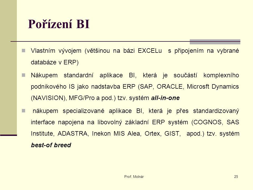 Pořízení BI Vlastním vývojem (většinou na bázi EXCELu s připojením na vybrané databáze v ERP)