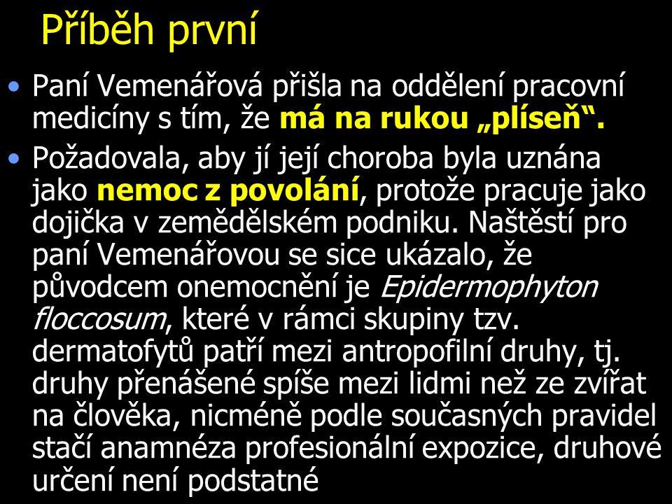 """Příběh první Paní Vemenářová přišla na oddělení pracovní medicíny s tím, že má na rukou """"plíseň ."""
