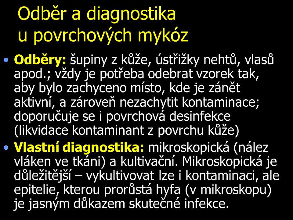 Odběr a diagnostika u povrchových mykóz