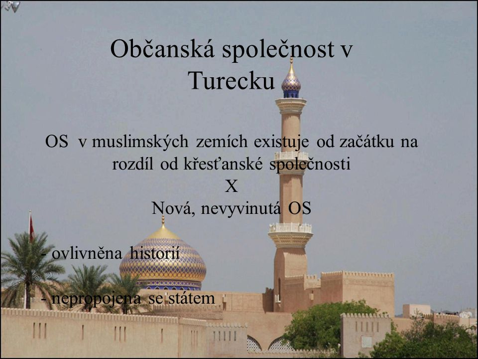 Občanská společnost v Turecku