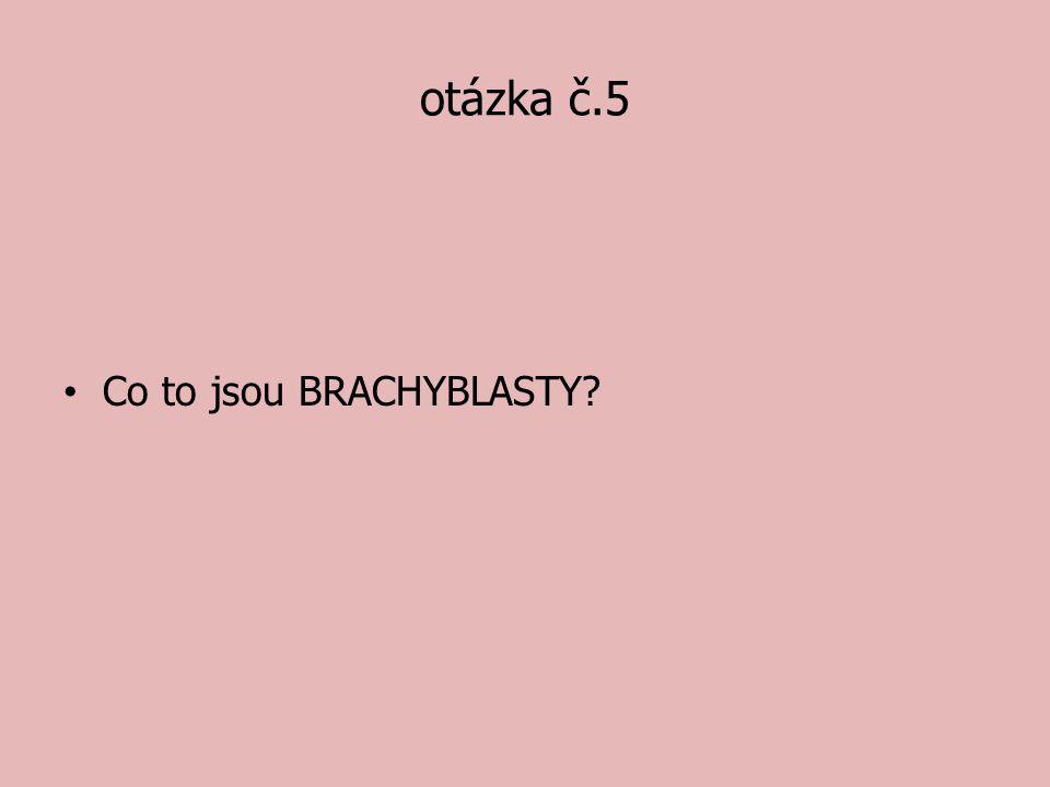 otázka č.5 Co to jsou BRACHYBLASTY