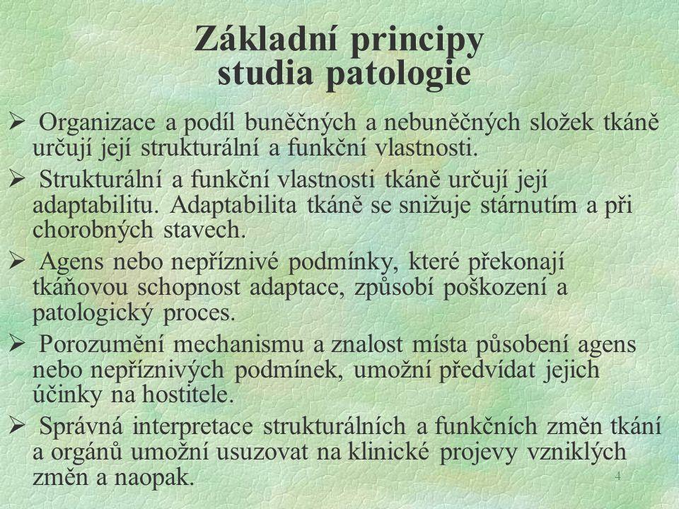 Základní principy studia patologie