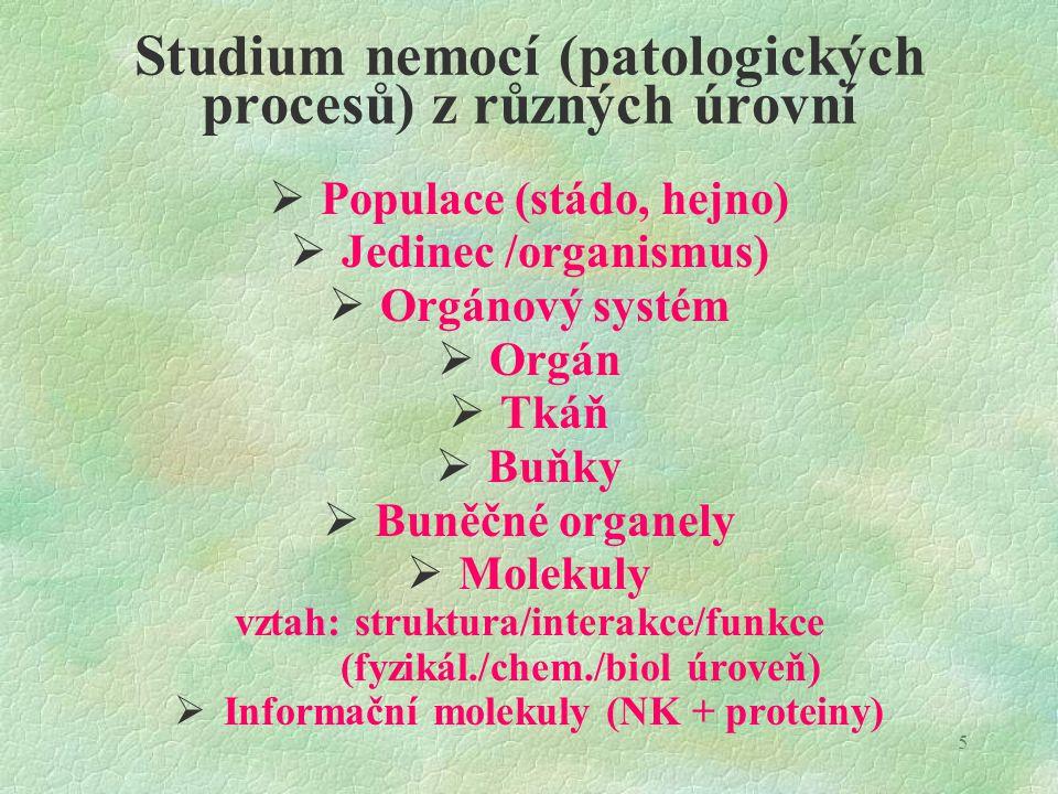 Studium nemocí (patologických procesů) z různých úrovní
