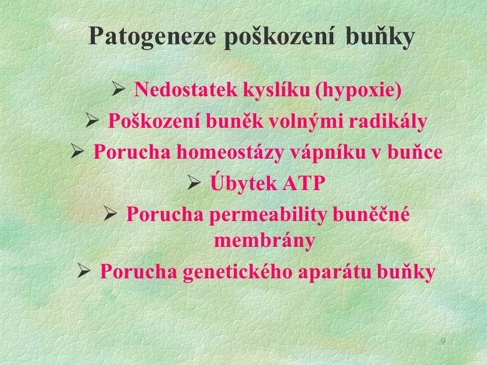 Patogeneze poškození buňky