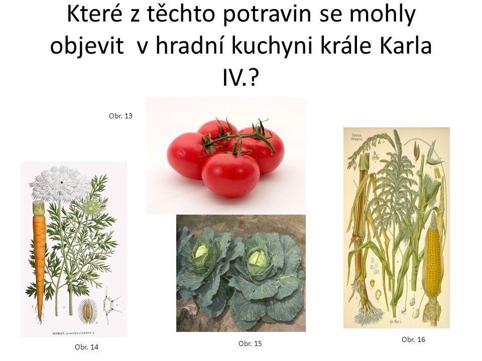 Které z těchto potravin se mohly objevit v hradní kuchyni krále Karla IV.