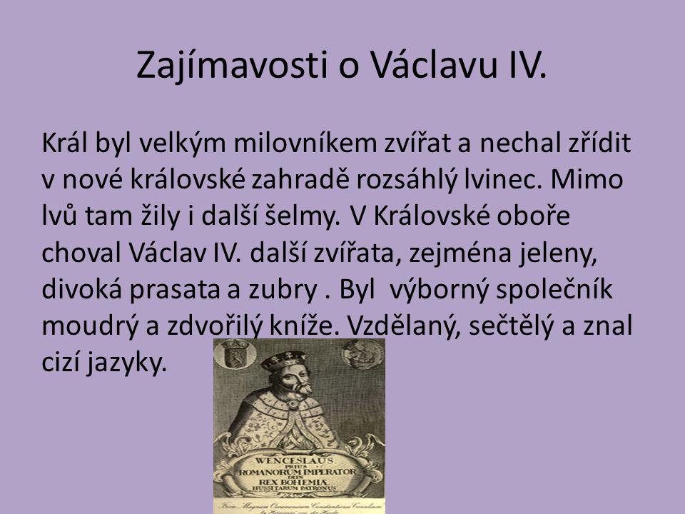 Zajímavosti o Václavu IV.