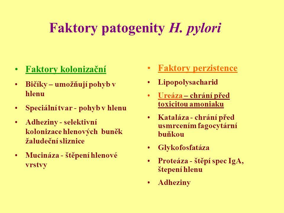 Faktory patogenity H. pylori