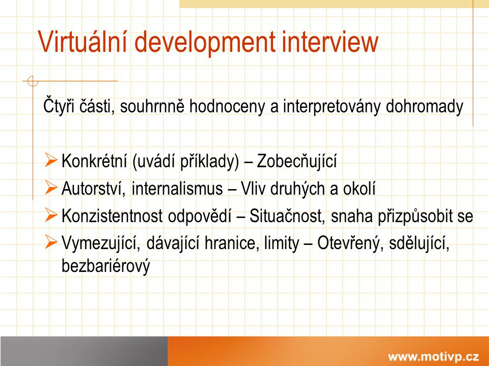 Virtuální development interview