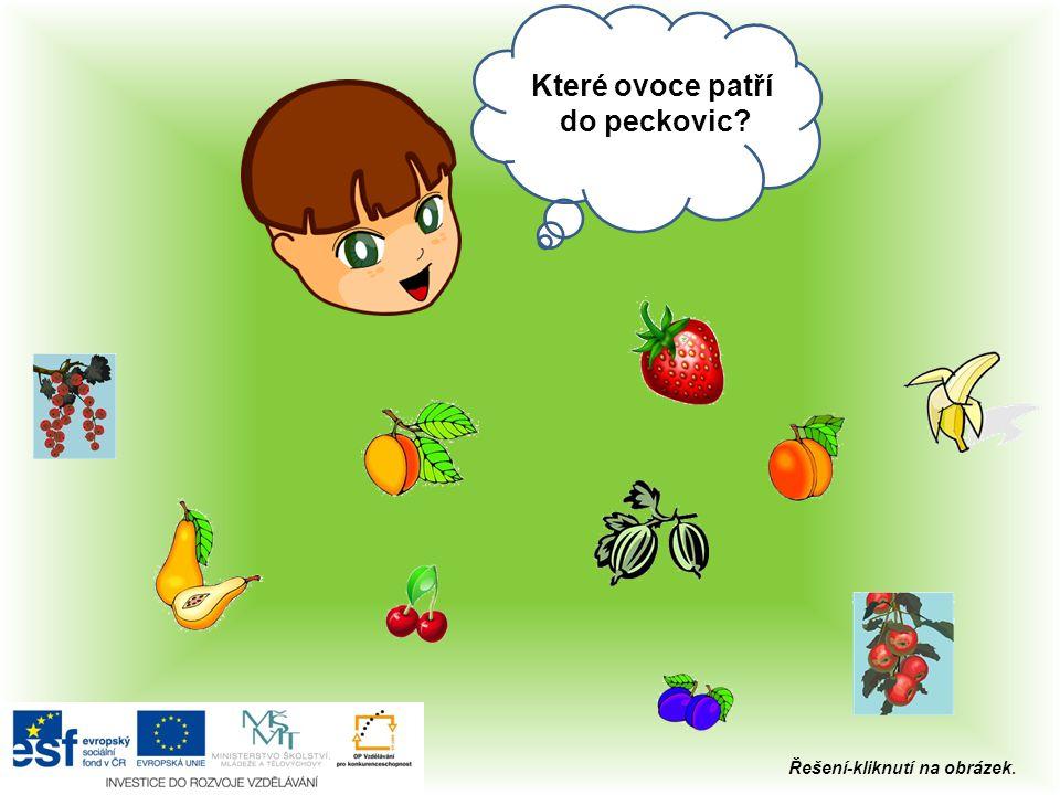 Které ovoce patří do peckovic