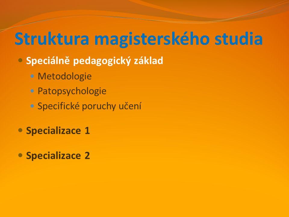 Struktura magisterského studia