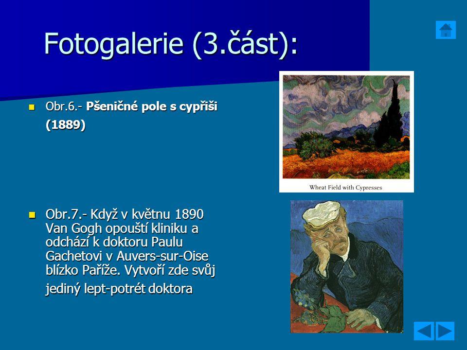 Fotogalerie (3.část): Obr.6.- Pšeničné pole s cypřiši (1889)