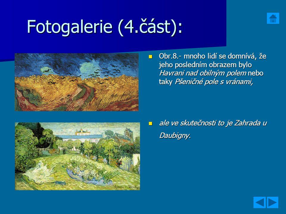 Fotogalerie (4.část): Obr.8.- mnoho lidí se domnívá, že jeho posledním obrazem bylo Havrani nad obilným polem nebo taky Pšeničné pole s vránami,