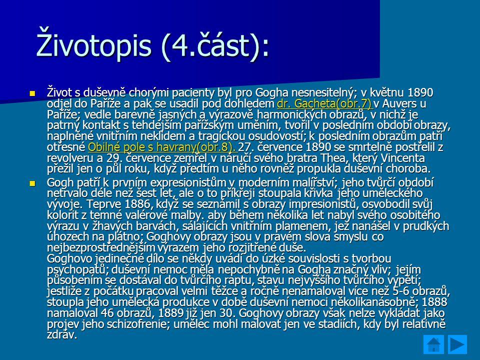Životopis (4.část):