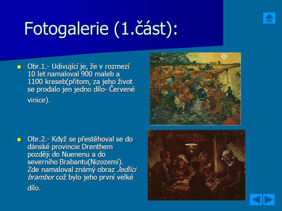 Fotogalerie (1.část):