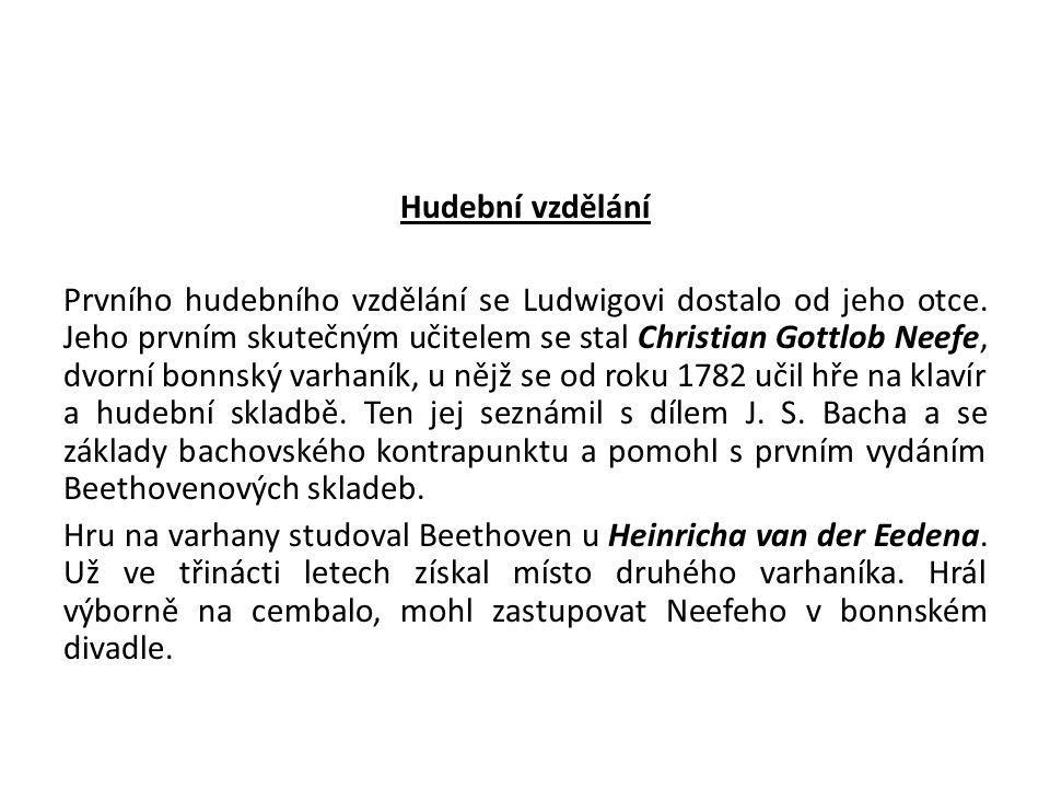 Hudební vzdělání Prvního hudebního vzdělání se Ludwigovi dostalo od jeho otce.