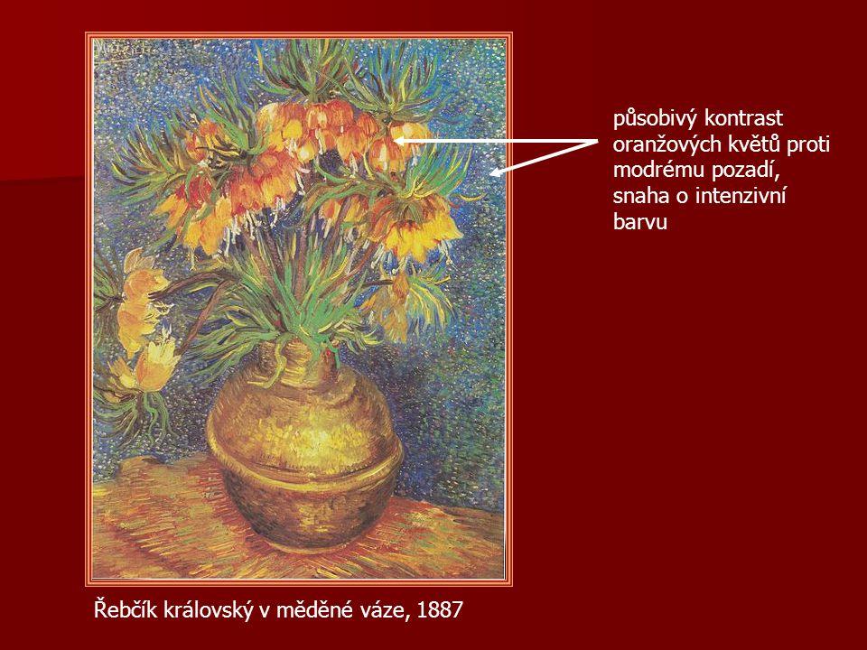působivý kontrast oranžových květů proti modrému pozadí, snaha o intenzivní barvu