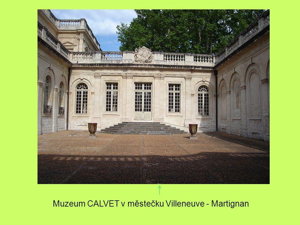 Muzeum CALVET v městečku Villeneuve - Martignan