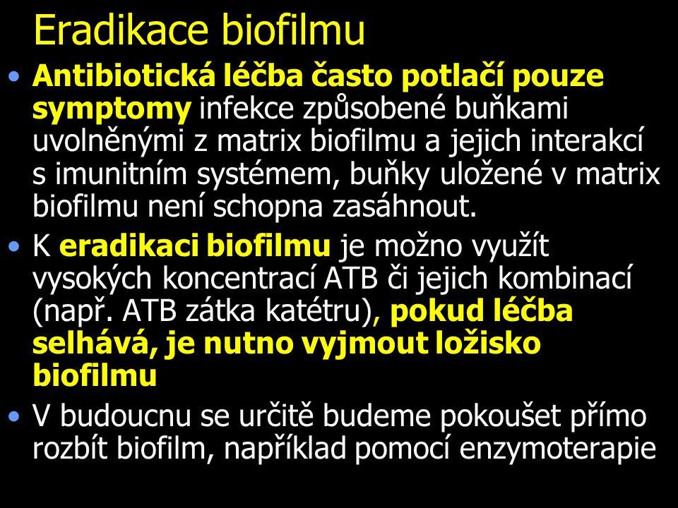 Eradikace biofilmu