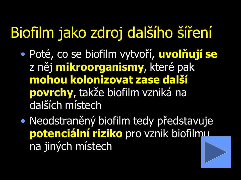 Biofilm jako zdroj dalšího šíření