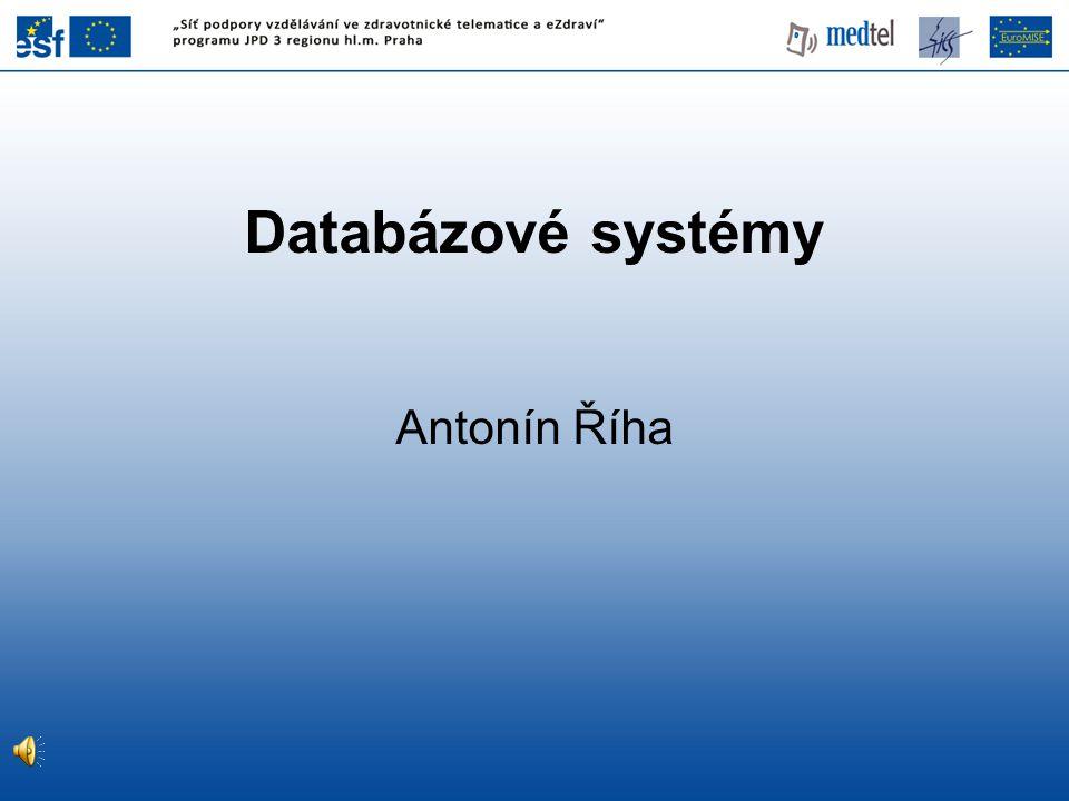 Databázové systémy Antonín Říha 1