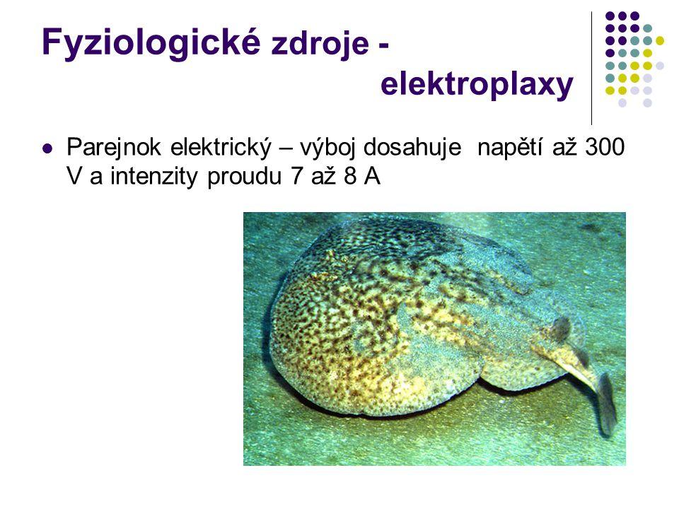 Fyziologické zdroje - elektroplaxy