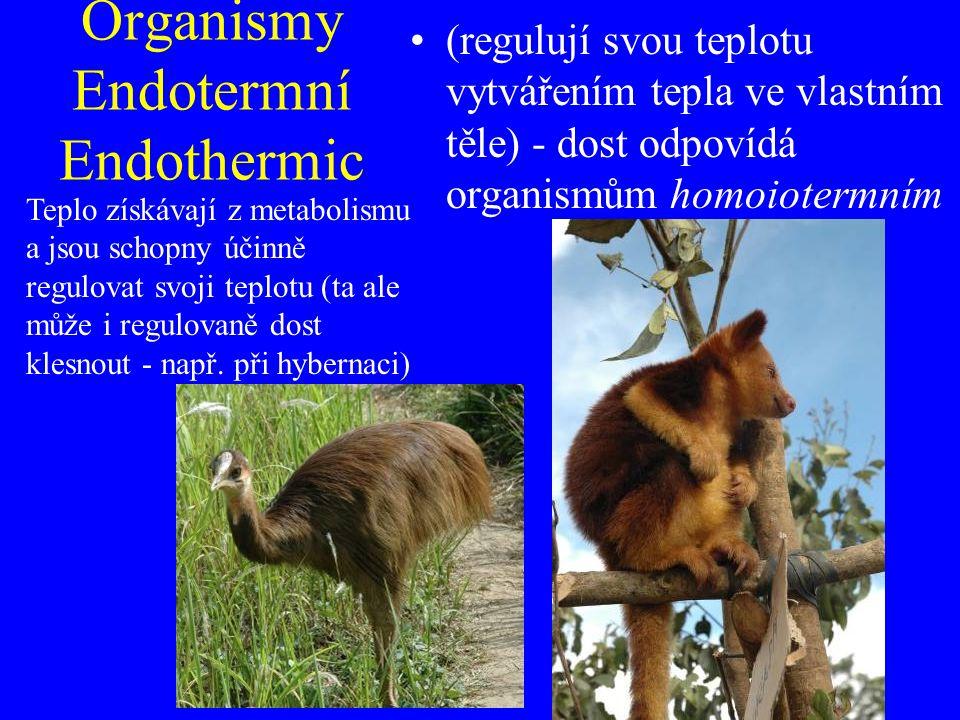 Organismy Endotermní Endothermic