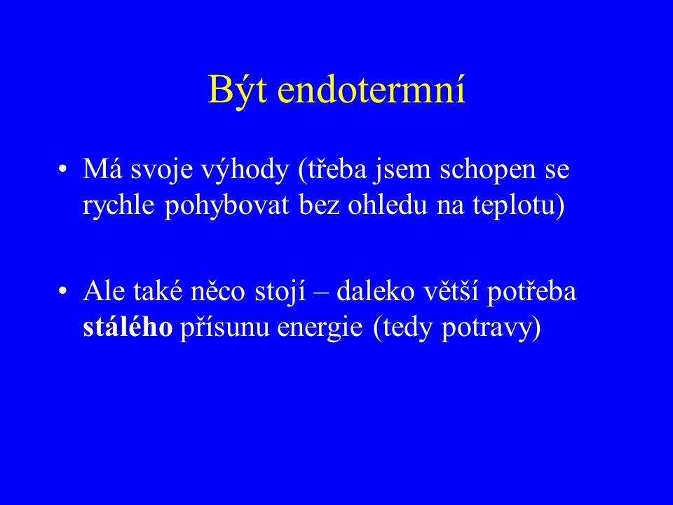 Být endotermní Má svoje výhody (třeba jsem schopen se rychle pohybovat bez ohledu na teplotu)