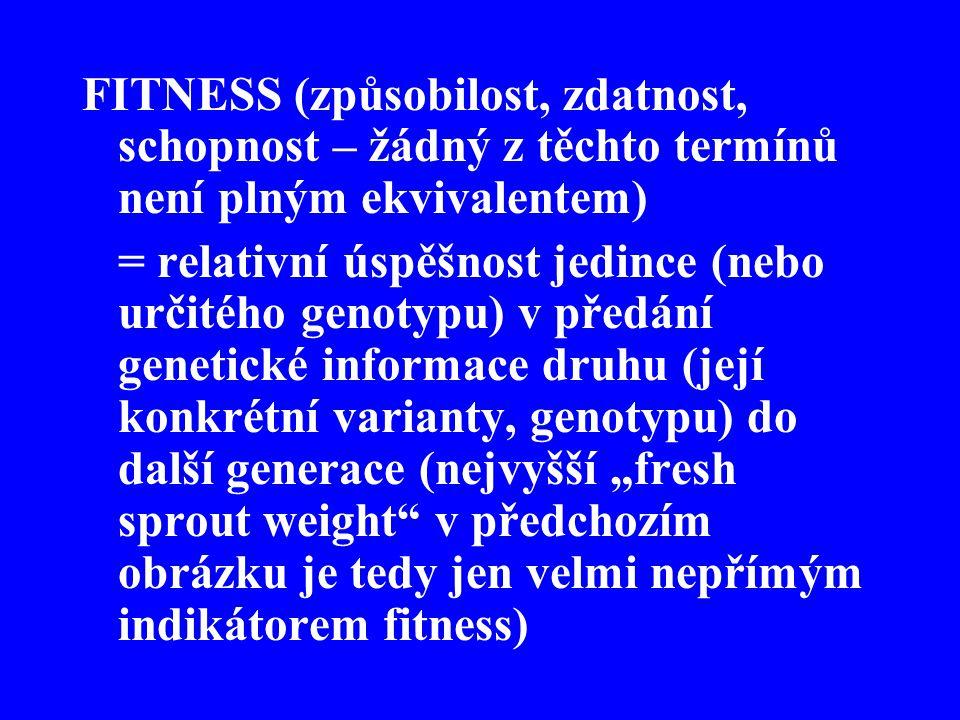 FITNESS (způsobilost, zdatnost, schopnost – žádný z těchto termínů není plným ekvivalentem)