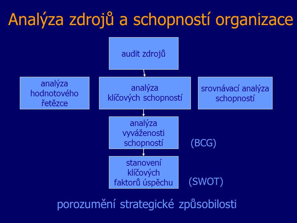 Analýza zdrojů a schopností organizace