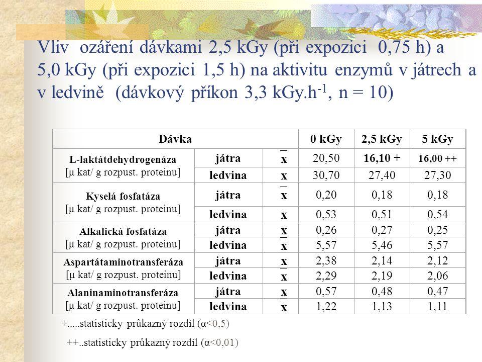 Vliv ozáření dávkami 2,5 kGy (při expozici 0,75 h) a 5,0 kGy (při expozici 1,5 h) na aktivitu enzymů v játrech a v ledvině (dávkový příkon 3,3 kGy.h-1, n = 10)