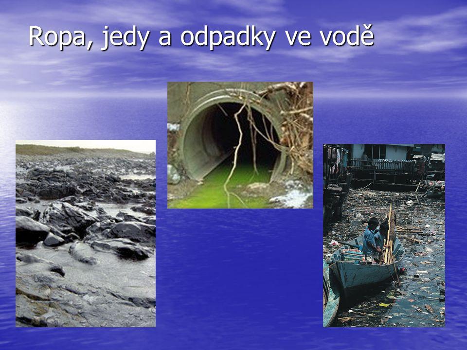 Ropa, jedy a odpadky ve vodě