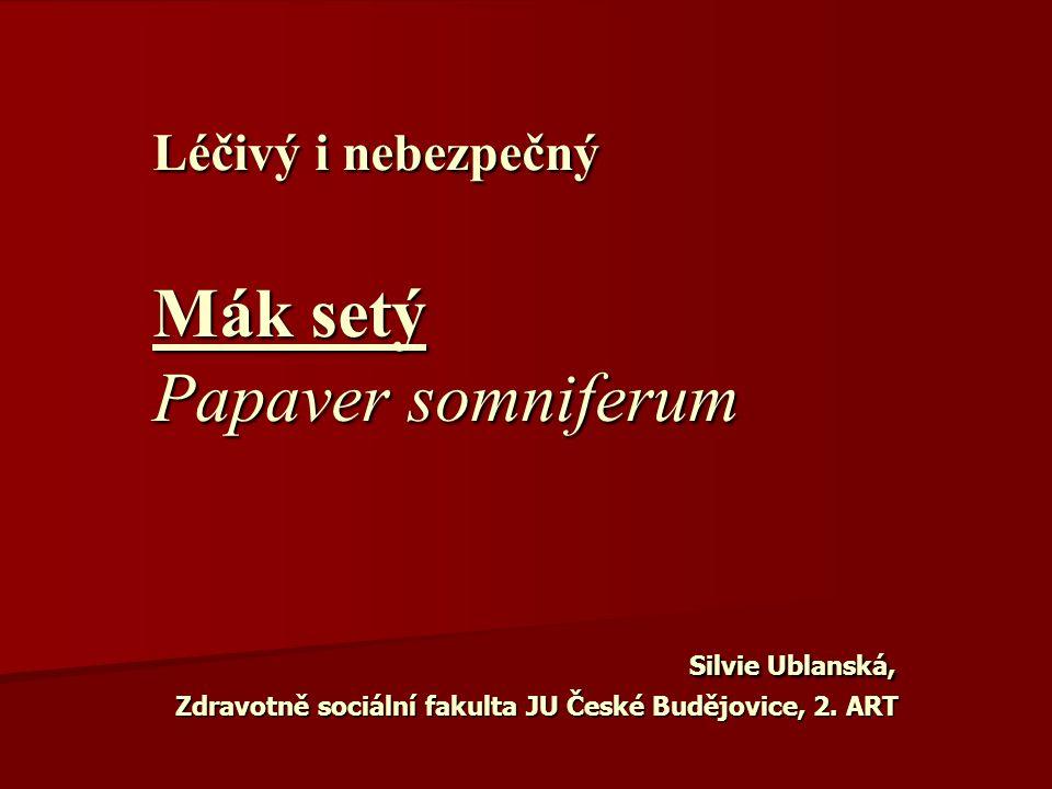 Léčivý i nebezpečný Mák setý Papaver somniferum Silvie Ublanská, Zdravotně sociální fakulta JU České Budějovice, 2.
