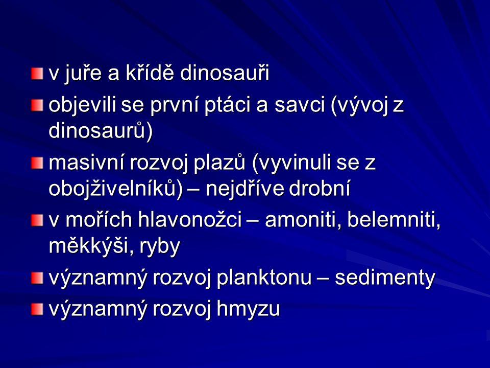 v juře a křídě dinosauři