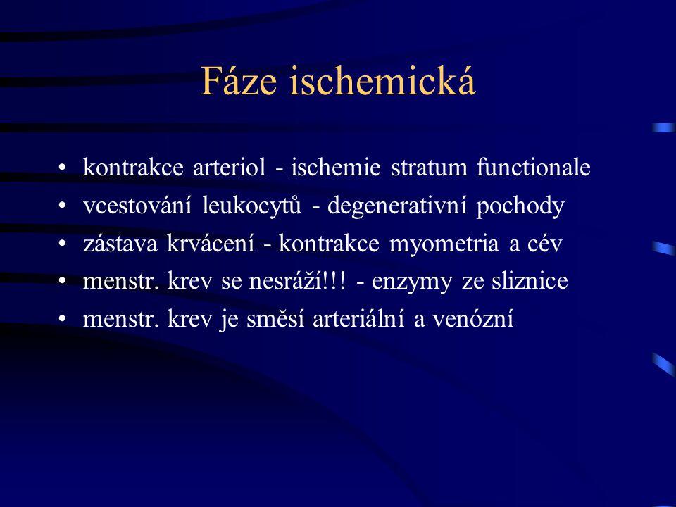 Fáze ischemická kontrakce arteriol - ischemie stratum functionale