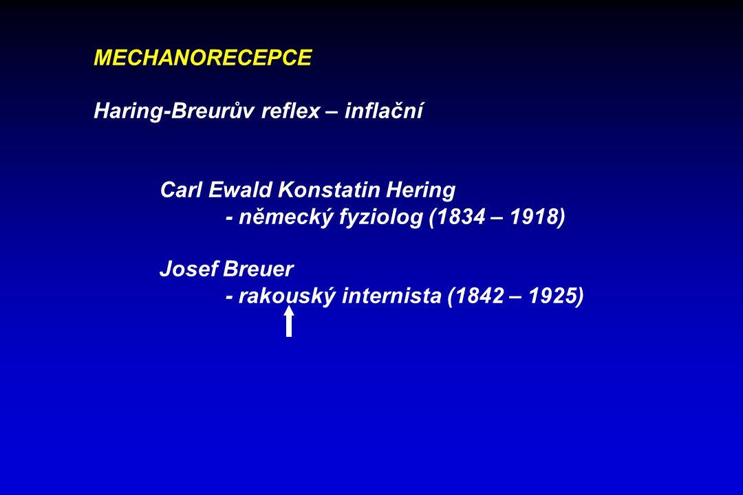 MECHANORECEPCE Haring-Breurův reflex – inflační. Carl Ewald Konstatin Hering. - německý fyziolog (1834 – 1918)