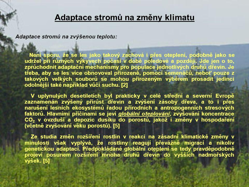 Adaptace stromů na změny klimatu