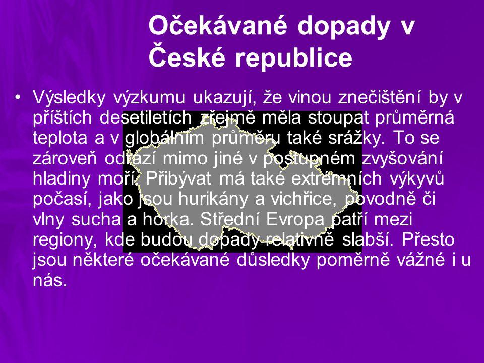 Očekávané dopady v České republice